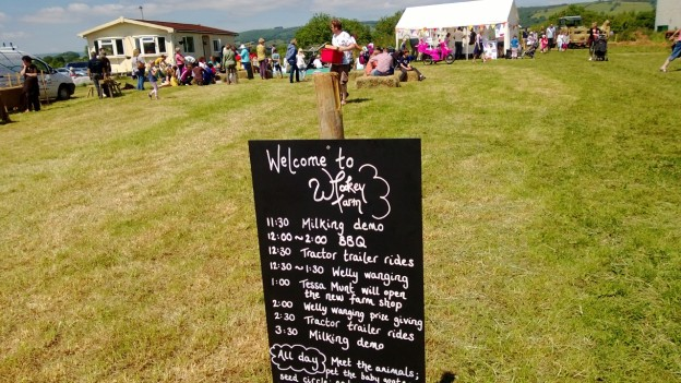 Open Farm Day at Wookey Farm